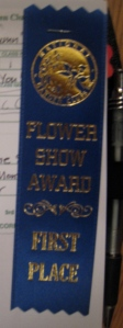 Regular Blue Ribbon